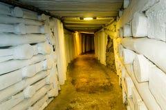 Αλατισμένο ορυχείο Wieliczka, Πολωνία στοκ εικόνες