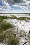αλατοποίηση λιμνών Στοκ εικόνες με δικαίωμα ελεύθερης χρήσης