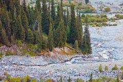 ΑΛΑ-Archa κοιλάδα, Κιργιστάν Στοκ φωτογραφία με δικαίωμα ελεύθερης χρήσης