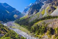 ΑΛΑ-Archa φαράγγι, Κιργιστάν Στοκ Εικόνες