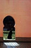 Αλγερία Οράν Στοκ φωτογραφία με δικαίωμα ελεύθερης χρήσης