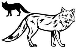 Αλεπού ελεύθερη απεικόνιση δικαιώματος