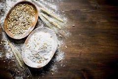 Αλεύρι με το σιτάρι στα κύπελλα στοκ εικόνες