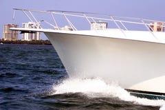 αλιεία ΙΙ Στοκ εικόνα με δικαίωμα ελεύθερης χρήσης