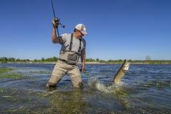 Αλιεία λούτσων Ευτυχείς πάλες ψαράδων με τα μεγάλα ψάρια στο νερό στον ποταμό στοκ φωτογραφίες
