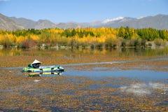 Αλιεία στο Θιβέτ Στοκ Φωτογραφίες