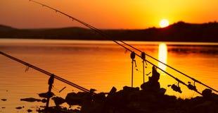 Αλιεία των ράβδων στη λίμνη Στοκ εικόνα με δικαίωμα ελεύθερης χρήσης