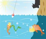 αλιεία Στοκ Εικόνες
