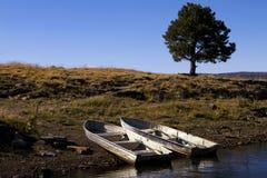 Αλιευτικά σκάφη πτώσης στην Αριζόνα Στοκ Φωτογραφία