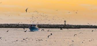 Αλιευτικό σκάφος με τα πουλιά στο ηλιοβασίλεμα στοκ φωτογραφίες