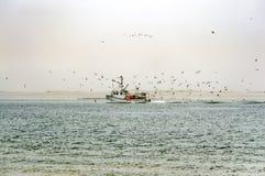 Αλιευτικό σκάφος που καταπίνεται από το κοπάδι πεινασμένα seagulls Στοκ Φωτογραφία