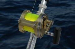 αλιεύοντας εξέλικτρο Στοκ Εικόνα