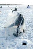 αλιεύοντας παγωμένη λίμνη Στοκ φωτογραφία με δικαίωμα ελεύθερης χρήσης