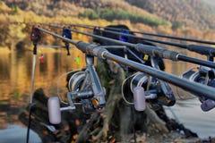 Αλιεύοντας ράβδοι Στοκ εικόνες με δικαίωμα ελεύθερης χρήσης