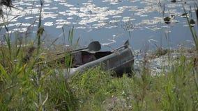 Αλιεύοντας τη βάρκα μετάλλων που δένεται από τον ποταμό μια ηλιόλουστη ημέρα απόθεμα βίντεο