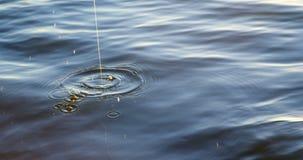 Αλιεύοντας το δόλωμα τεθειμένος στον ποταμό 4k απόθεμα βίντεο