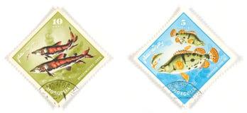 αλιεύστε τα γραμματόσημα  Στοκ φωτογραφίες με δικαίωμα ελεύθερης χρήσης