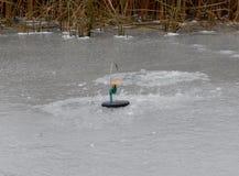 Αλιεύω-ράβδος για τη σύλληψη των αρπακτικών ψαριών ένας χειμώνας στοκ φωτογραφίες με δικαίωμα ελεύθερης χρήσης