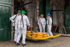 Αλκμάαρ, Κάτω Χώρες - 28 Απριλίου 2017: Μεταφορείς τυριών στην παραδοσιακή αγορά τυριών στοκ φωτογραφία με δικαίωμα ελεύθερης χρήσης