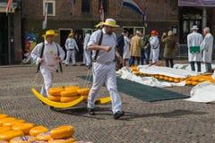 Αλκμάαρ, Κάτω Χώρες - 28 Απριλίου 2017: Μεταφορείς τυριών στην παραδοσιακή αγορά τυριών στοκ εικόνες με δικαίωμα ελεύθερης χρήσης