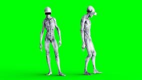 Αλλοδαπός μη απασχόλησης σε VR Ρεαλιστικά shaders κινήσεων και δερμάτων 4K πράσινο μήκος σε πόδηα οθόνης φιλμ μικρού μήκους