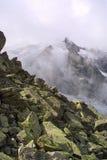 αλπική όψη συνόδου κορυφή& Στοκ Εικόνες