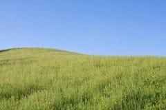 αλπικό αγροτικό έδαφος Στοκ φωτογραφία με δικαίωμα ελεύθερης χρήσης