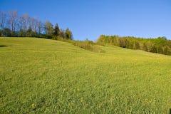 αλπικό αγροτικό έδαφος Στοκ Εικόνες