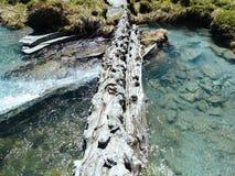 αλπικό ρεύμα ποταμών που ρέει μεταξύ των αλπικών λιβαδιών του devero α Στοκ Φωτογραφίες