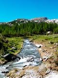 αλπικό ρεύμα ποταμών που ρέει μεταξύ των αλπικών λιβαδιών του devero α Στοκ φωτογραφία με δικαίωμα ελεύθερης χρήσης