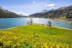 Αλπικό τοπίο με τη λίμνη του ST Moritz, Ελβετία Στοκ εικόνα με δικαίωμα ελεύθερης χρήσης