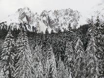 Αλπικό τοπίο των δολομιτών με το χιόνι Trentino στοκ εικόνα