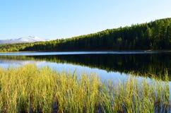 αλσατικό Λίμνη Ζ βουνών; idely, απόψεις της κορυφογραμμής Kurai στοκ φωτογραφία με δικαίωμα ελεύθερης χρήσης