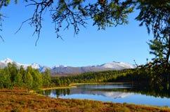 αλσατικό Λίμνη Ζ βουνών; idely, απόψεις της κορυφογραμμής Kurai στοκ εικόνες με δικαίωμα ελεύθερης χρήσης