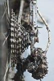 Αλυσίδα και σύνολο εργαλείων με τη λάσπη Στοκ Φωτογραφία