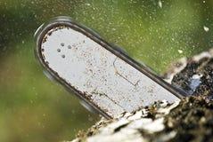 αλυσιδοπρίονο λεπίδων Στοκ Εικόνες