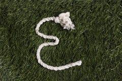 Αλφάβητο σχοινιών στη χλόη Γράμμα Ε Στοκ φωτογραφία με δικαίωμα ελεύθερης χρήσης