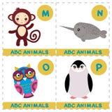 Αλφάβητο ABC για τα παιδιά Σύνολο αστείου narwhal χαρακτήρα ζώων κινούμενων σχεδίων πιθήκων κουκουβαγιών penguin Κάρτες για το πα ελεύθερη απεικόνιση δικαιώματος