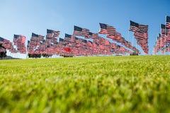 αμερικανικές σημαίες πεδίων Στοκ Εικόνες