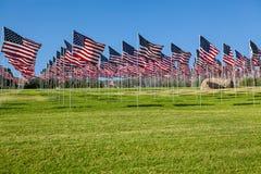 αμερικανικές σημαίες πεδίων Στοκ Φωτογραφίες