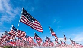 αμερικανικές σημαίες πεδίων Στοκ εικόνα με δικαίωμα ελεύθερης χρήσης