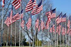 Αμερικανικές σημαίες που φυσούν στον αέρα Στοκ Εικόνα