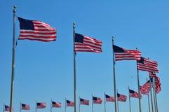 αμερικανικές σημαίες στοκ εικόνα με δικαίωμα ελεύθερης χρήσης