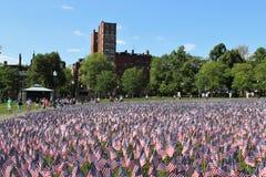 αμερικανικές σημαίες Στοκ Εικόνα
