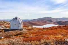 Αμερικανική αποθήκη μετάλλων και greenlandic πορτοκαλί tundra φθινοπώρου τοπίο W στοκ εικόνες