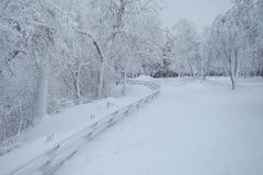 Αμερικανική πλευρά του πάρκου καταρρακτών του Νιαγάρα στο σούρουπο Στοκ φωτογραφία με δικαίωμα ελεύθερης χρήσης