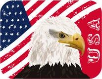 Αμερικανική σημαία, αετός, eps10 Στοκ φωτογραφία με δικαίωμα ελεύθερης χρήσης