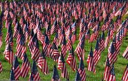 αμερικανική σημαία πεδίων Στοκ εικόνες με δικαίωμα ελεύθερης χρήσης
