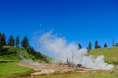Αμερικανικός βίσωνας σε Yellowstone Στοκ φωτογραφία με δικαίωμα ελεύθερης χρήσης