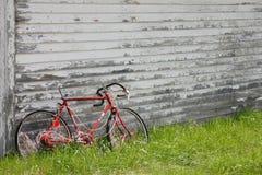 αμερικανικός τρύγος Στοκ Φωτογραφία